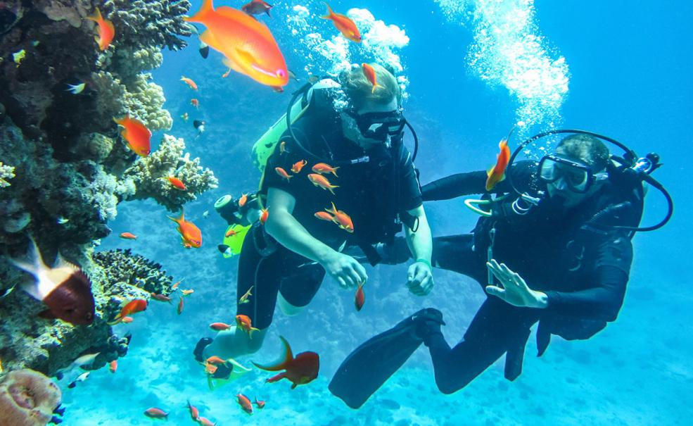 5 Day Learn To Dive on the Great Barrier Reef, Cairns